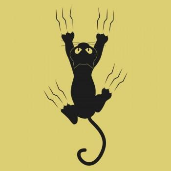 Kapaszkodó macska